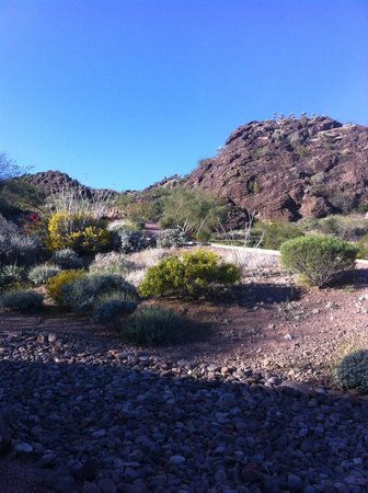 Phoenix Marriott Tempe at The Buttes: Hiking trails