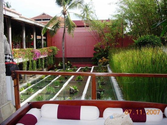 Melia Bali : hotel territory