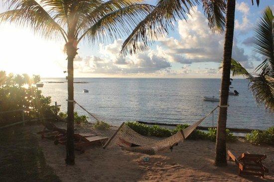Tropical Attitude: sunrise