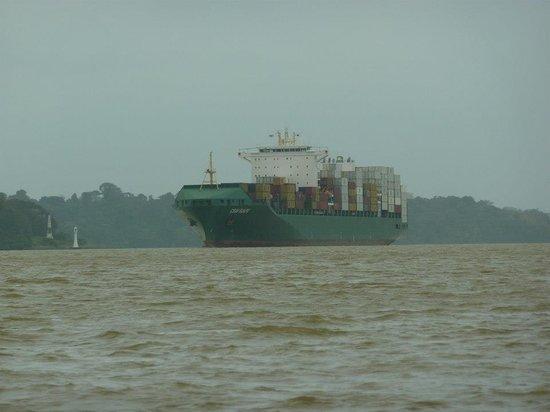 Jungle Land Panama: Day Excursions : Navigating Gatun near large ships