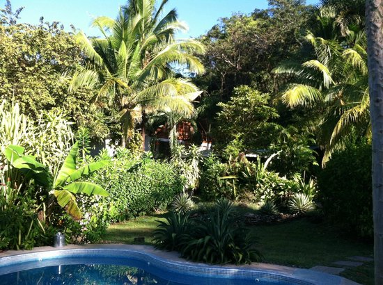 Entre Dos Aguas: View of the B&B from the pool
