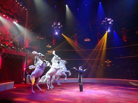 Cirque d'hiver Bouglione : Les chevaux