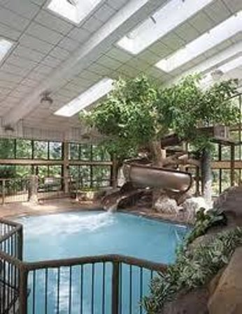 Park Vista - DoubleTree by Hilton Hotel - Gatlinburg : park vista's pool