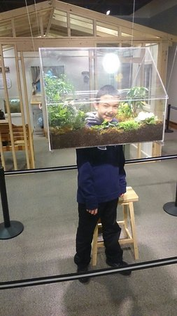 Montshire Museum of Science: This is actually the exhibit - put your head inside and SEE it up close