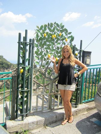Wisely Travelling: The famous lemons of the Amalfi Coast