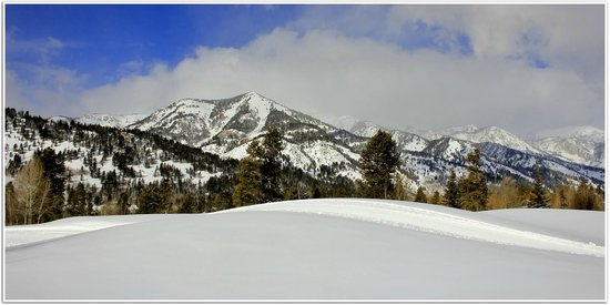 Teton Pines Country Club: Beautiful Cross Country Ski Course