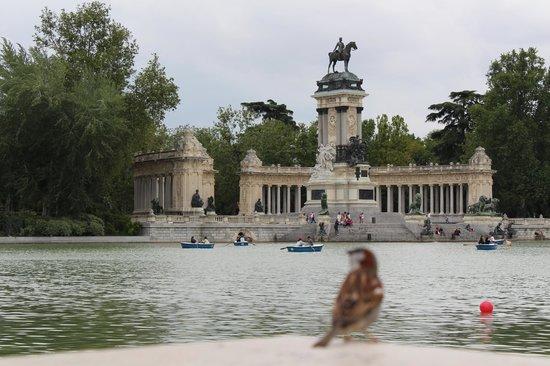 Parque del Retiro: Lago central