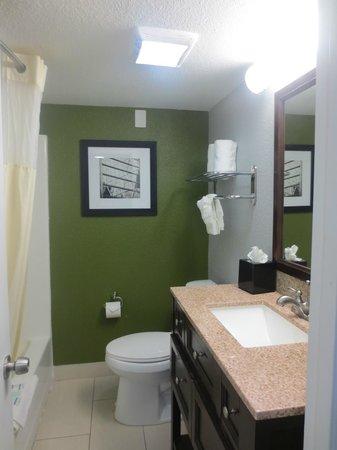 Rodeway Inn & Suites Downtown North: Bathroom