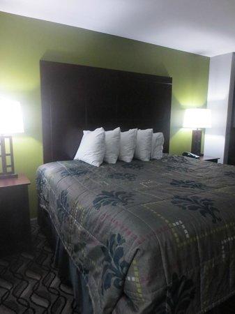 Rodeway Inn & Suites Downtown North: Room