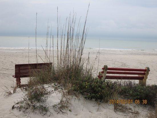 Seagate Condominiums: Benches on the beach