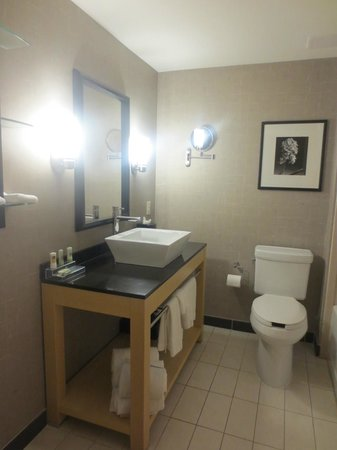 Hilton Garden Inn San Antonio Airport South : Bathroom