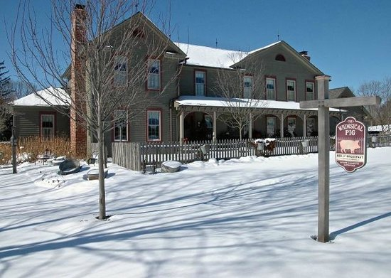 The Whimsical Pig Bed and Breakfast at Wolf Creek: Winter at The Whimsical Pig