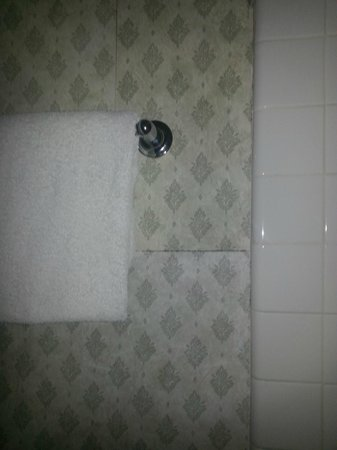 Caravelle Inn & Suites : Mold in bathroom