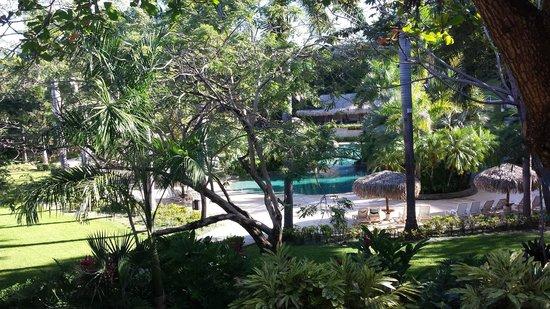 Hotel Tamarindo Diria: vista da janela do apartamento