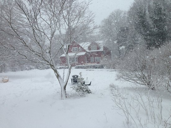 Woods Hole Passage Bed & Breakfast Inn: Pretty in Winter too!