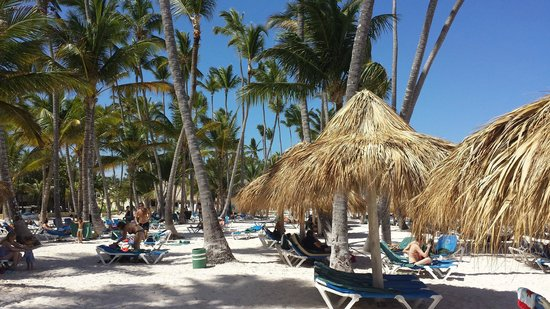Melia Caribe Tropical : Beach