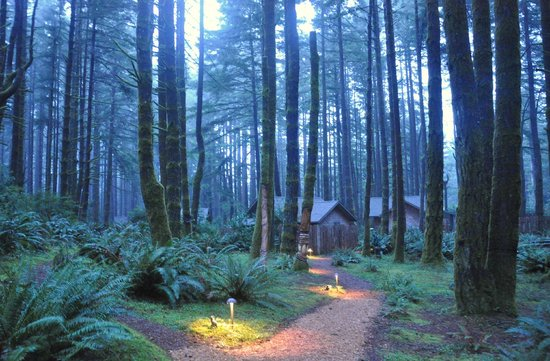 Port Orford, Oregón: Cabins in the woods
