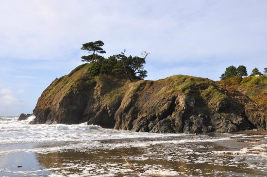 WildSpring Guest Habitat: Battle Rock, Port Orford