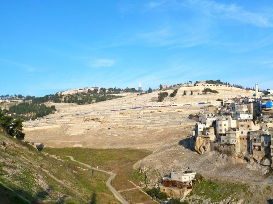 City of David National Park: View from above
