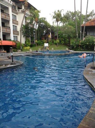 Sanur Paradise Plaza Suites : Pool