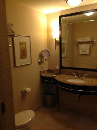 Hilton Americas - Houston : Bathroom (good lighting)