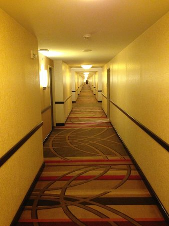 Hilton Americas - Houston: LONG hallway