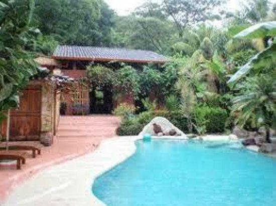 La Hacienda Lodge: Oasis Pool. Palm and waterfalls