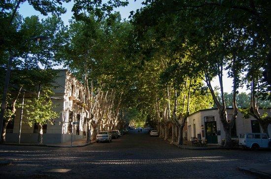 Barrio Historico: Rua de Colonia