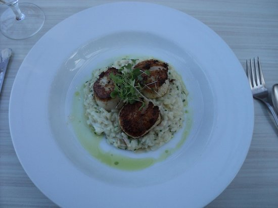 Ariana Restaurant: Jumbo Scallops served over Crab Risotto