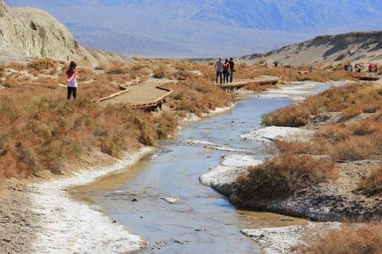 Salt Creek Interpretive Trail : .