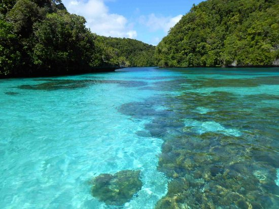 Palau Pacific Resort: boat trip
