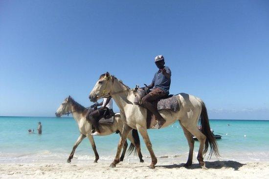 Fun Holiday Beach Resort: Tu peux prendre une ride de cheval sur la plage