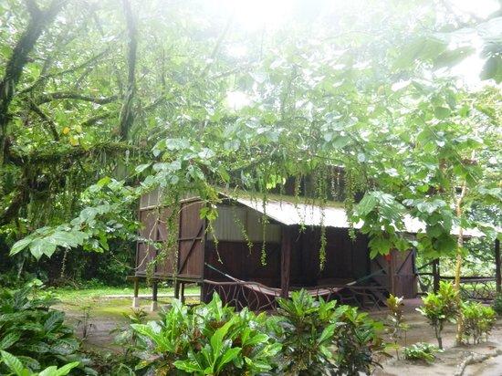 Anaconda Lodge Ecuador : Anaconda Lodge