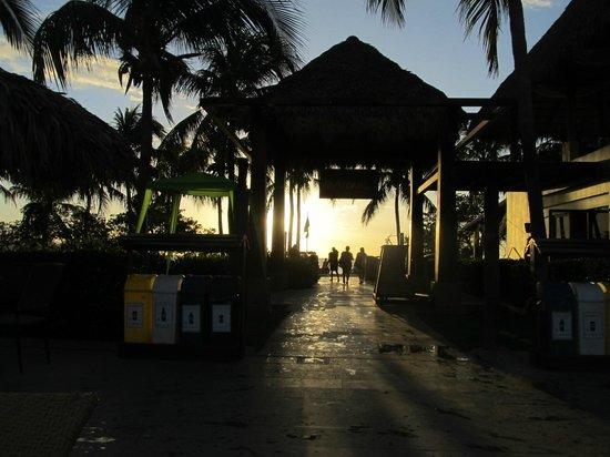 Flamingo Beach Resort & Spa: sitting at the pool looking at the beach