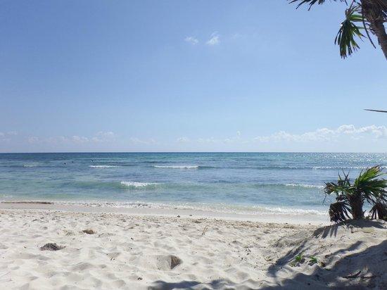 Grand Riviera Princess All Suites Resort & Spa : Beach