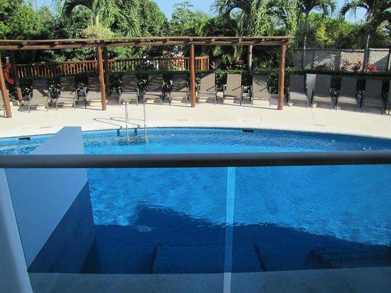 Grand Riviera Princess All Suites Resort & Spa : Swim up pool