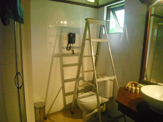 Amaya Lake: Ahhh the ladder that they forgot