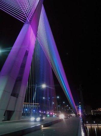 Le pont de Putrajaya : Purple was my favourite