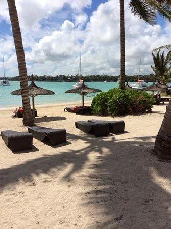 Ocean Villas : l'ombre sous les cocotiers