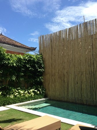 Uma Sapna: Private Pool area @ Room Moyo