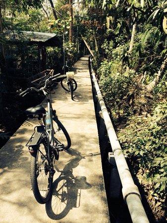 ABC Amazing Bangkok Cyclist: Wat een geweldige fietservaring!