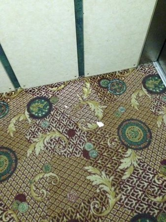Ramada Fargo: the dirt in the elevator