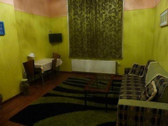 Sunrise Apart Hotel: LDKに小さなテレビがあるが、フランス語放送のみ