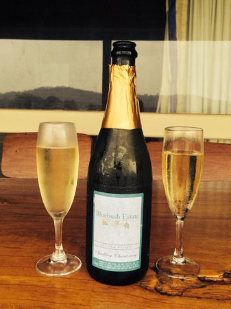Bluebush Estate: Champagne with a view from the chalet