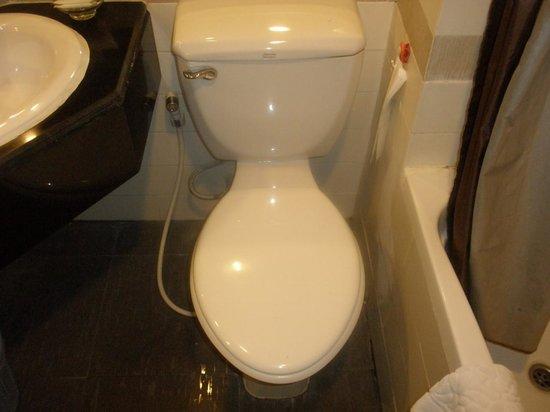 C H Hotel: toilet bowl too near to long bath-- hardly any room to set properly