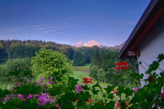 Alm- & Wellnesshotel Alpenhof: View from our balcony