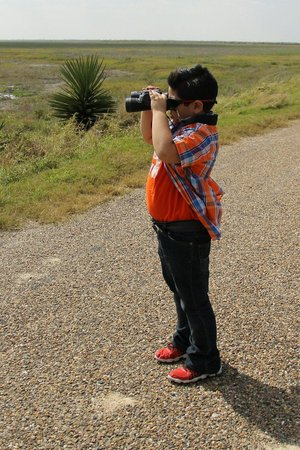 Laguna Atascosa National Wildlife Refuge: My Bird Watcher. Picture taken. Y Martha Avila. 2/16/14
