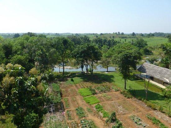 Kalu's Hideaway: grounds
