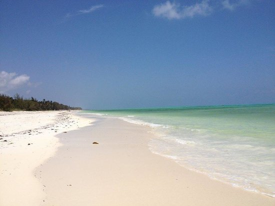Zanzibar White Sand Luxury Villas & Spa : beach