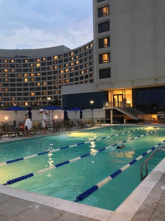 Washington Hilton : Pool area